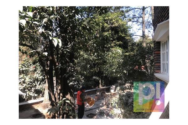 Foto de casa en venta en  , jardines en la montaña, tlalpan, df / cdmx, 5830705 No. 03