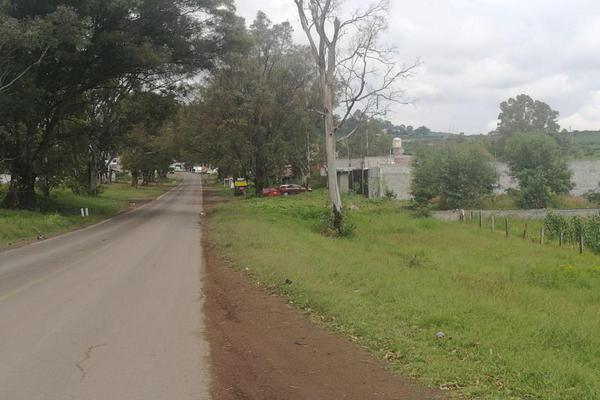 Foto de terreno habitacional en venta en  , jaripeo, charo, michoacán de ocampo, 5679576 No. 04