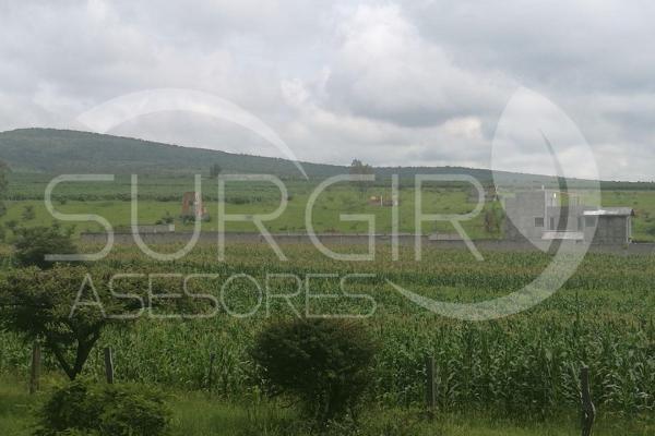 Foto de terreno habitacional en venta en  , jaripeo, charo, michoacán de ocampo, 6491221 No. 01