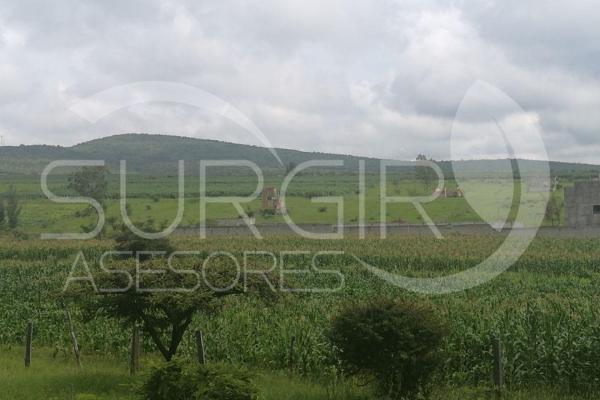 Foto de terreno habitacional en venta en  , jaripeo, charo, michoacán de ocampo, 6491221 No. 02