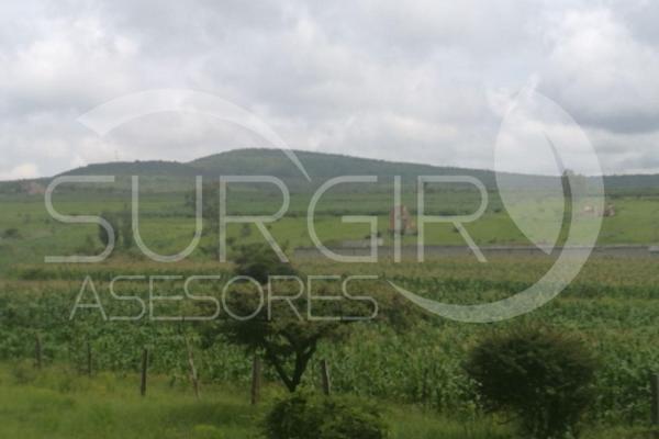 Foto de terreno habitacional en venta en  , jaripeo, charo, michoacán de ocampo, 6491221 No. 03