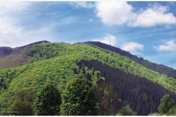 Foto de departamento en venta en  , jesús del monte, huixquilucan, méxico, 7153185 No. 02