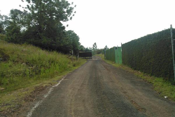 Foto de terreno habitacional en venta en  , jesús del monte, morelia, michoacán de ocampo, 10919713 No. 04
