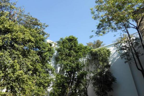 Foto de oficina en renta en joaquín argáez , san miguel chapultepec ii sección, miguel hidalgo, df / cdmx, 7301006 No. 01