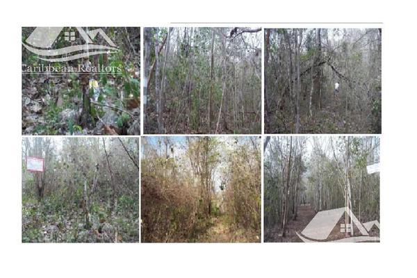 Foto de terreno habitacional en venta en  , josé maría morelos, josé maría morelos, quintana roo, 15149618 No. 02