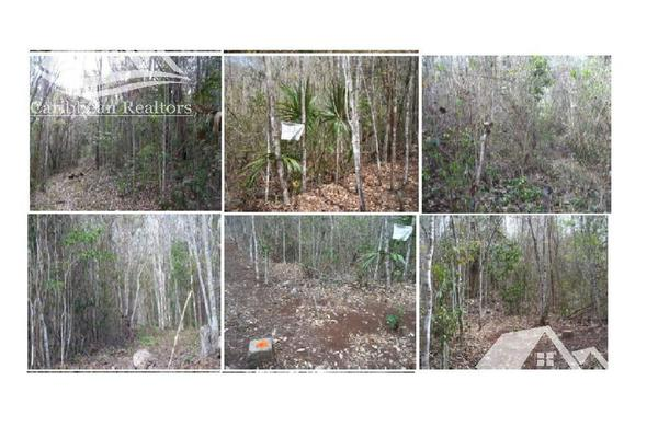 Foto de terreno habitacional en venta en  , josé maría morelos, josé maría morelos, quintana roo, 15149618 No. 03