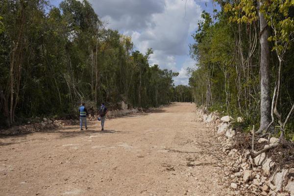 Foto de terreno habitacional en venta en  , josé maría morelos, josé maría morelos, quintana roo, 16277477 No. 12