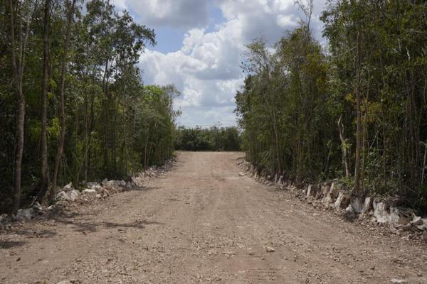 Foto de terreno habitacional en venta en  , josé maría morelos, josé maría morelos, quintana roo, 16277477 No. 15
