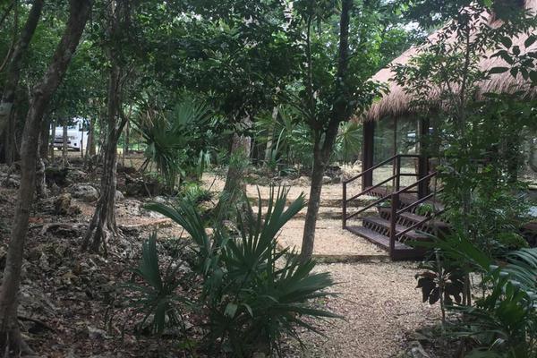 Foto de terreno habitacional en venta en  , josé maría morelos, josé maría morelos, quintana roo, 16277477 No. 17