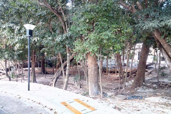 Foto de terreno habitacional en venta en  , josé maría morelos, josé maría morelos, quintana roo, 0 No. 09