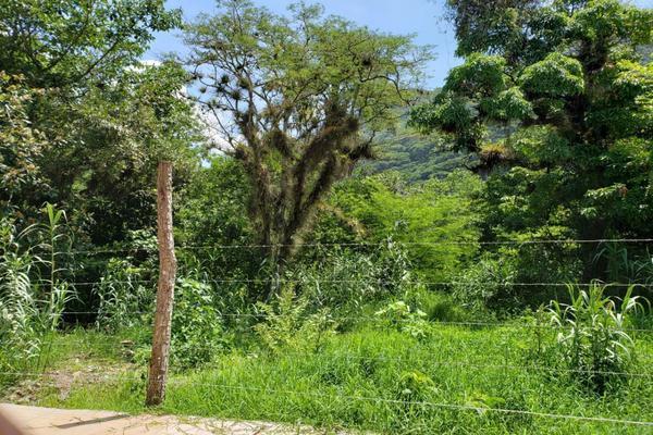 Foto de terreno habitacional en venta en josefa ortiz de dominguez , huiloapan de cuauhtémoc centro, huiloapan de cuauhtémoc, veracruz de ignacio de la llave, 10865219 No. 02