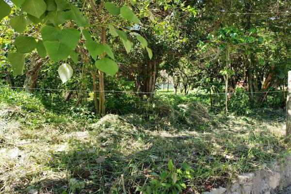 Foto de terreno habitacional en venta en josefa ortiz de dominguez , huiloapan de cuauhtémoc centro, huiloapan de cuauhtémoc, veracruz de ignacio de la llave, 10865219 No. 03