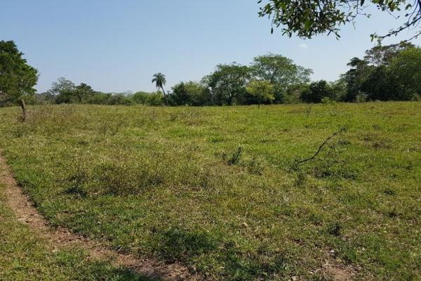 Foto de terreno habitacional en venta en juan de afaro , medellin de bravo, medellín, veracruz de ignacio de la llave, 5358397 No. 06