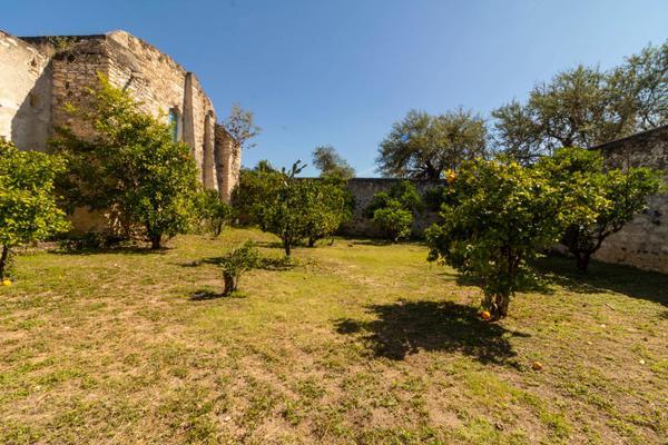 Foto de rancho en venta en juan escutia , morenos, san nicolás tolentino, san luis potosí, 10713710 No. 07