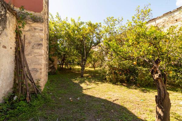Foto de rancho en venta en juan escutia , morenos, san nicolás tolentino, san luis potosí, 10713710 No. 13