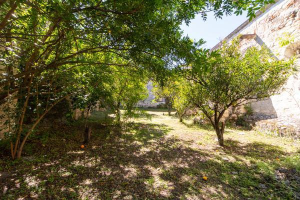 Foto de rancho en venta en juan escutia , morenos, san nicolás tolentino, san luis potosí, 10713710 No. 14