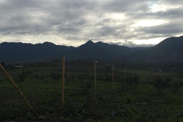 Foto de terreno habitacional en venta en juan escutia , san pablo etla, san pablo etla, oaxaca, 0 No. 02