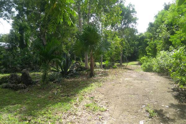 Foto de terreno habitacional en venta en juan galvan , alfredo v bonfil, benito juárez, quintana roo, 0 No. 01