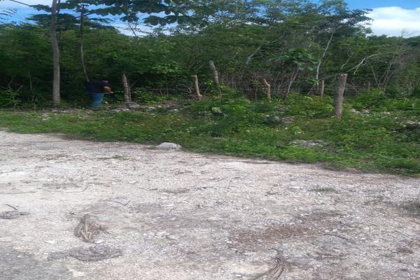 Foto de terreno habitacional en venta en juan galvan , alfredo v bonfil, benito juárez, quintana roo, 0 No. 03