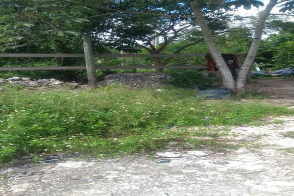 Foto de terreno habitacional en venta en juan galvan , alfredo v bonfil, benito juárez, quintana roo, 0 No. 06