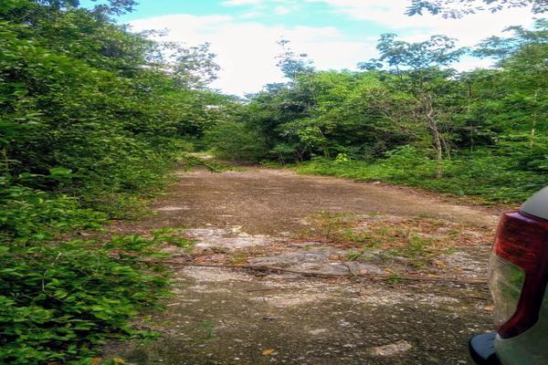 Foto de terreno habitacional en venta en juan galvan , alfredo v bonfil, benito juárez, quintana roo, 0 No. 07