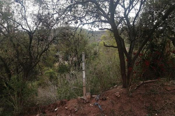 Foto de terreno habitacional en venta en juan pablo ii , burocrático, guanajuato, guanajuato, 0 No. 03