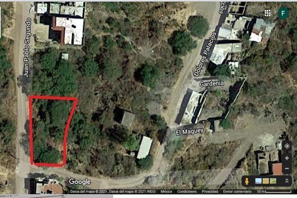 Foto de terreno habitacional en venta en juan pablo ii , burocrático, guanajuato, guanajuato, 0 No. 04