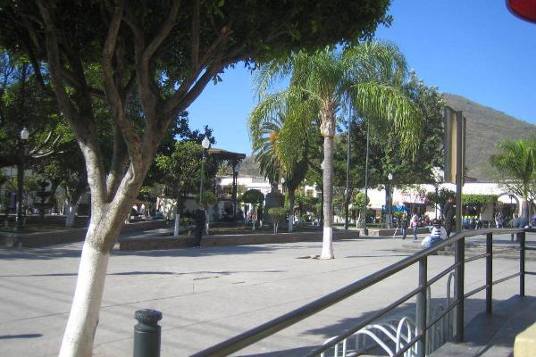 Foto de local en renta en juárez , tlajomulco centro, tlajomulco de zúñiga, jalisco, 5439200 No. 02