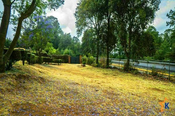 Foto de casa en venta en  , kercus, pátzcuaro, michoacán de ocampo, 0 No. 15