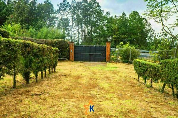 Foto de casa en venta en  , kercus, pátzcuaro, michoacán de ocampo, 0 No. 17