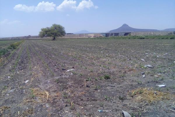 Foto de terreno comercial en venta en carretera tula - tlahuelilpan kilometro 14, teocalco, tlaxcoapan, hidalgo, 2686927 No. 01