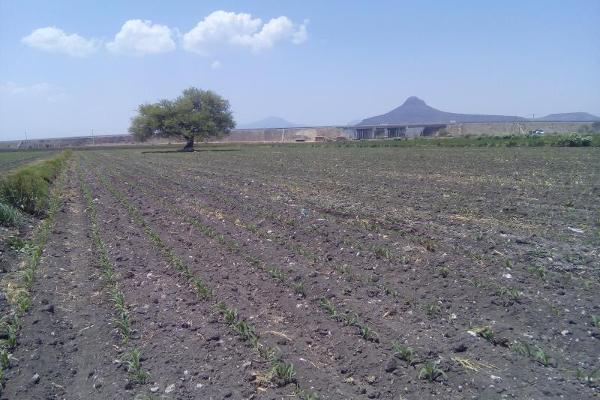 Foto de terreno comercial en venta en carretera tula - tlahuelilpan kilometro 14, teocalco, tlaxcoapan, hidalgo, 2686927 No. 02