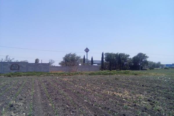 Foto de terreno comercial en venta en carretera tula - tlahuelilpan kilometro 14, teocalco, tlaxcoapan, hidalgo, 2686927 No. 04