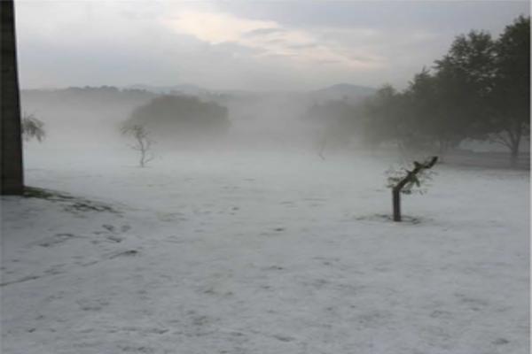 Foto de rancho en venta en kilometro 17 carretera la marquesa , jardines de santiago, tianguistenco, méxico, 7479197 No. 11