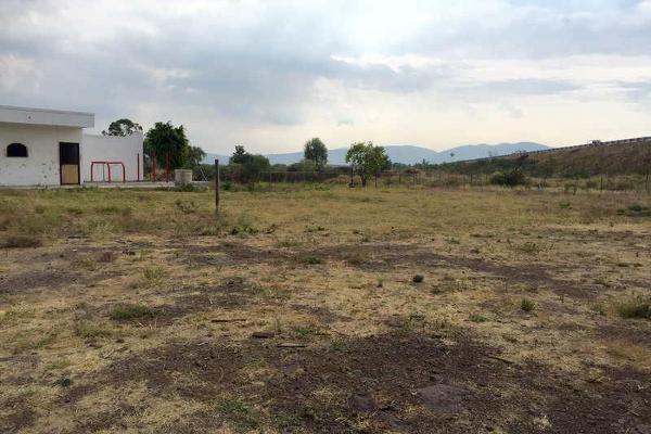 Foto de terreno industrial en venta en kilometro 2.1 carretera santa rosa-la barca 0, los cedros, ixtlahuacán de los membrillos, jalisco, 5195006 No. 04