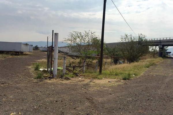 Foto de terreno industrial en venta en kilometro 2.1 carretera santa rosa-la barca 0, los cedros, ixtlahuacán de los membrillos, jalisco, 5195006 No. 11