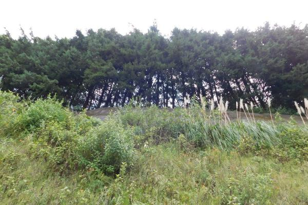 Foto de terreno comercial en venta en kilometro 22, carretera méxico-toluca , cuajimalpa, cuajimalpa de morelos, df / cdmx, 14033365 No. 04