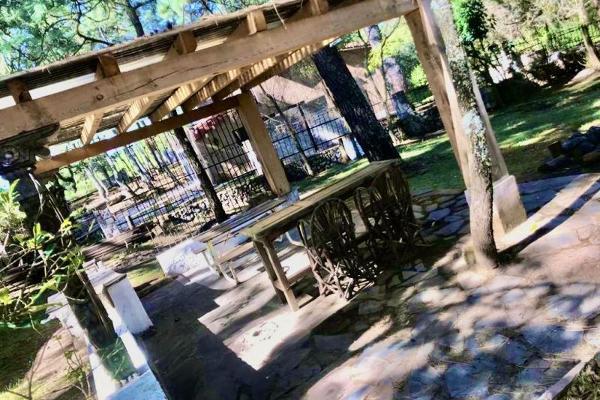 Foto de rancho en venta en kilometro 22 de la carretera guadalajara-tapalpa 3 kilómetros 22, san martin, tapalpa, jalisco, 5886922 No. 15