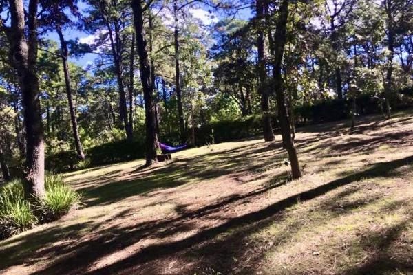 Foto de rancho en venta en kilometro 22 de la carretera guadalajara-tapalpa 3 kilómetros 22, san martin, tapalpa, jalisco, 5886922 No. 17