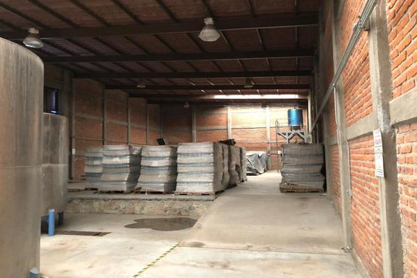 Foto de nave industrial en venta en kilometro 25 1, santa rosa, ixtlahuacán de los membrillos, jalisco, 8234762 No. 04