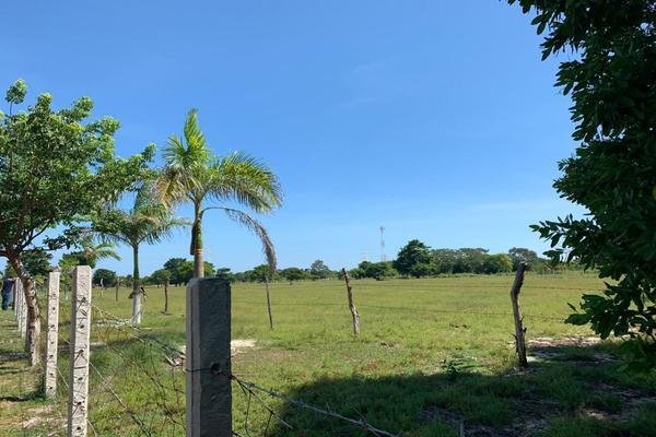 Foto de terreno habitacional en venta en kilometro 26, carretera carmen puerto real , isla de tris, carmen, campeche, 14037099 No. 02