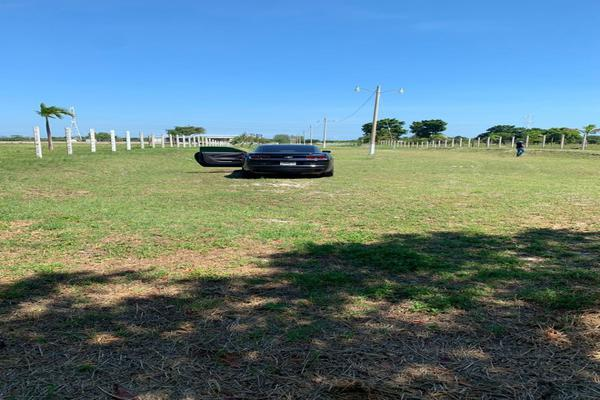 Foto de terreno habitacional en venta en kilometro 26, carretera carmen puerto real , isla de tris, carmen, campeche, 14037099 No. 04