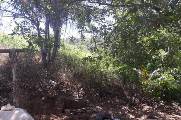 Foto de terreno habitacional en venta en kilometro 30, guerrero 8, kilómetro 30, acapulco de juárez, guerrero, 9121147 No. 06