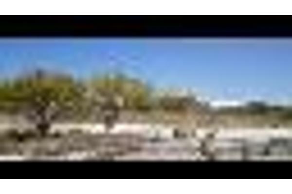 Foto de terreno habitacional en venta en kilometro 35.5 carretera el colorado, toliman 1001 bernal 0, bernal, ezequiel montes, querétaro, 2650992 No. 02