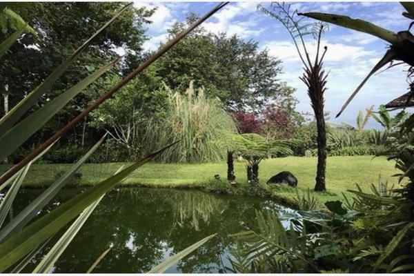 Foto de rancho en venta en kilómetro 7 carretera cuetzacapoaxtla , cuetzalan del progreso, cuetzalan del progreso, puebla, 16087133 No. 25