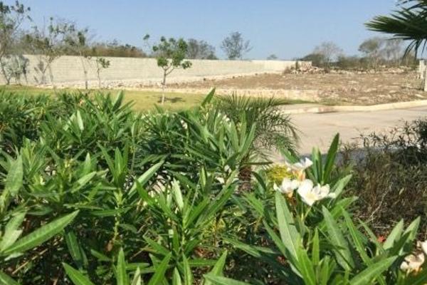 Foto de terreno habitacional en venta en kilometro 7 carretera mérida - motul , conkal, conkal, yucatán, 4676686 No. 29