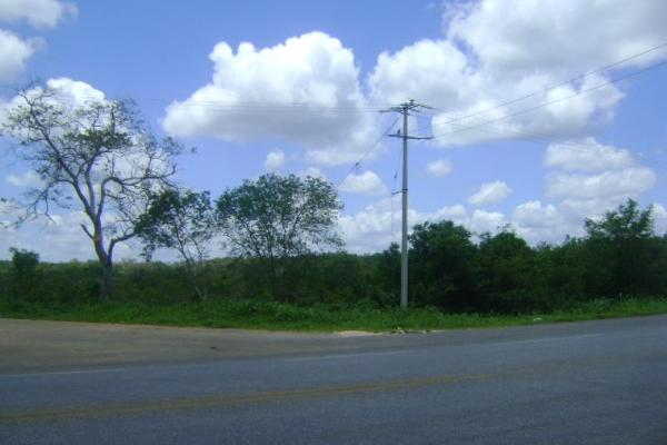 Foto de terreno comercial en venta en carretera camp-merida kilometro 59, san pedro, tenabo, campeche, 2687789 No. 03