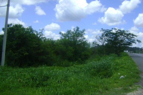 Foto de terreno comercial en venta en carretera camp-merida kilometro 59, san pedro, tenabo, campeche, 2687789 No. 04