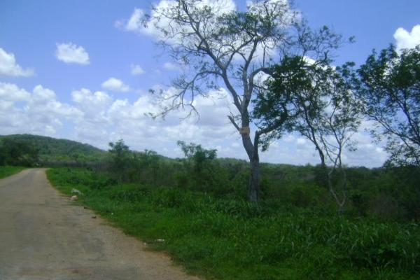 Foto de terreno comercial en venta en carretera camp-merida kilometro 59, san pedro, tenabo, campeche, 2687789 No. 05
