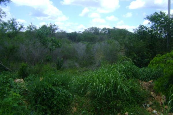 Foto de terreno comercial en venta en carretera camp-merida kilometro 59, san pedro, tenabo, campeche, 2687789 No. 06